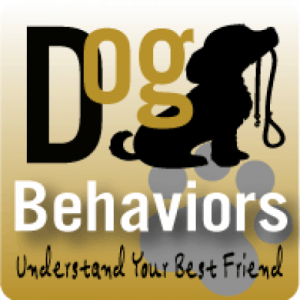 Logo Dog behaviors