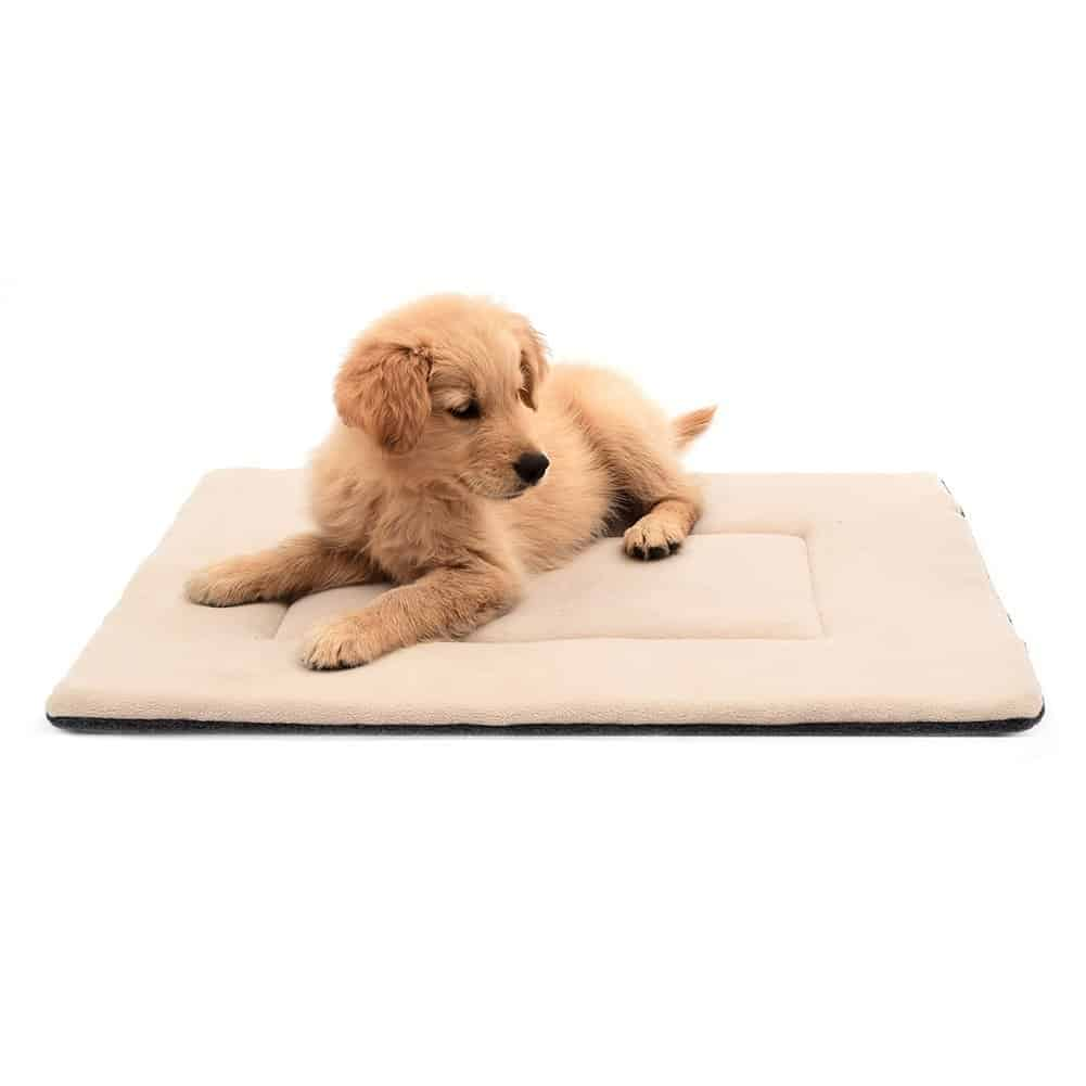 Pad Pet Bed