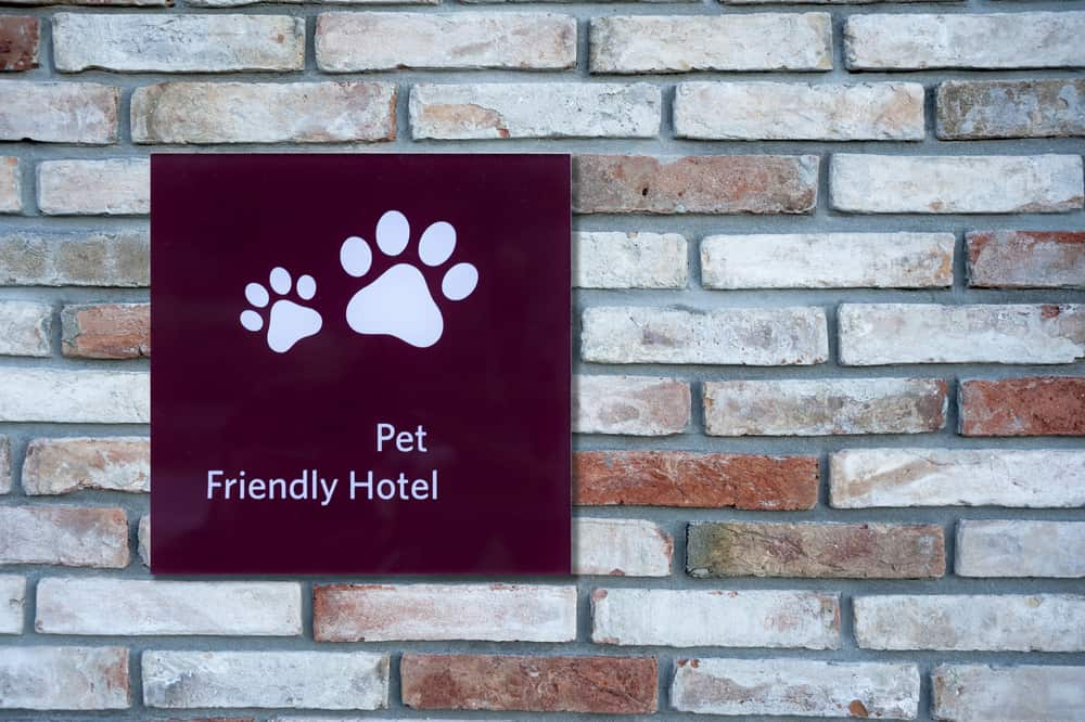Pet Friendly Hotel Sign