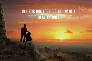 Do You Want a Healthy Dog?