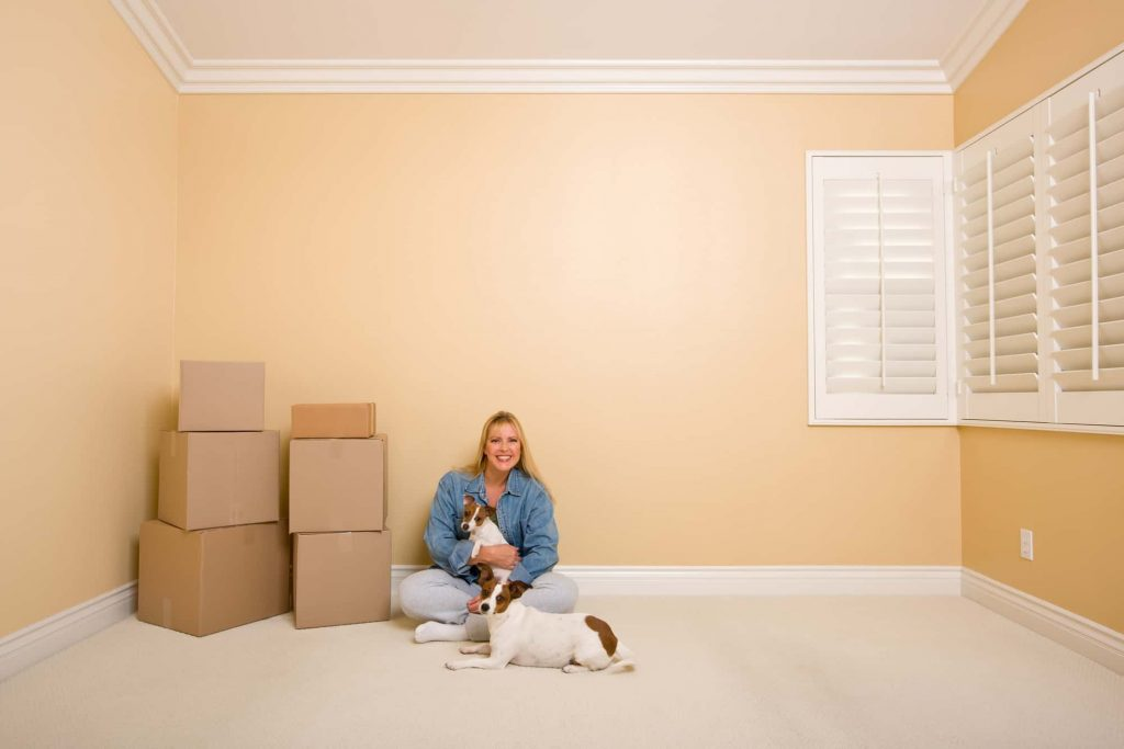 Dogs affected after moving, Provide the right amount of affection after moving