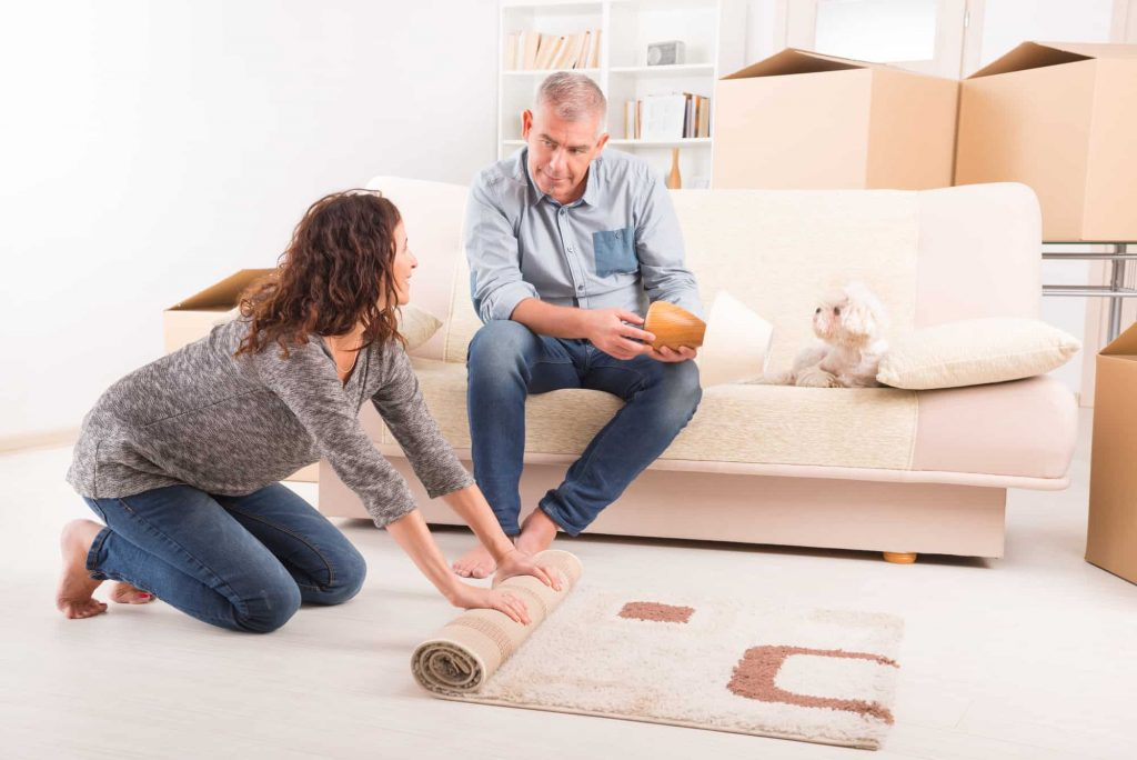 Dogs affected after moving and changing your furniture